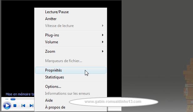 télécharger vidéo tf1 replay mac